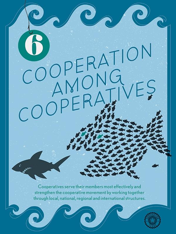 Cooperation Among Cooperatives