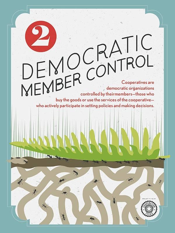 Democratic Member Control